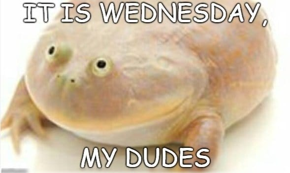 its wednesday my dudes meme