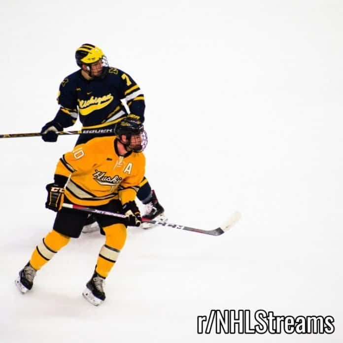 Reddit NHL Streams | Guide + Links To Watch Live Online Games