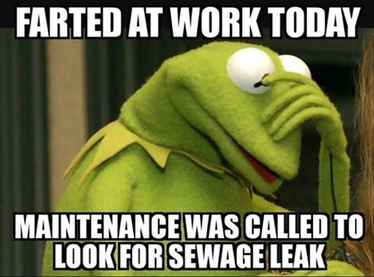 C:\Users\Admin\Music\web\farted-at-work-today-kermit-the-frog-memes-1.jpg