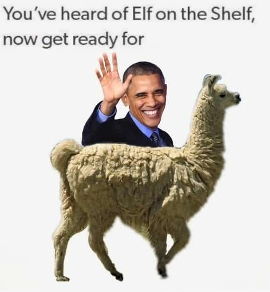 Elf on a shelf 012 obama on a lama – Comics And Memes