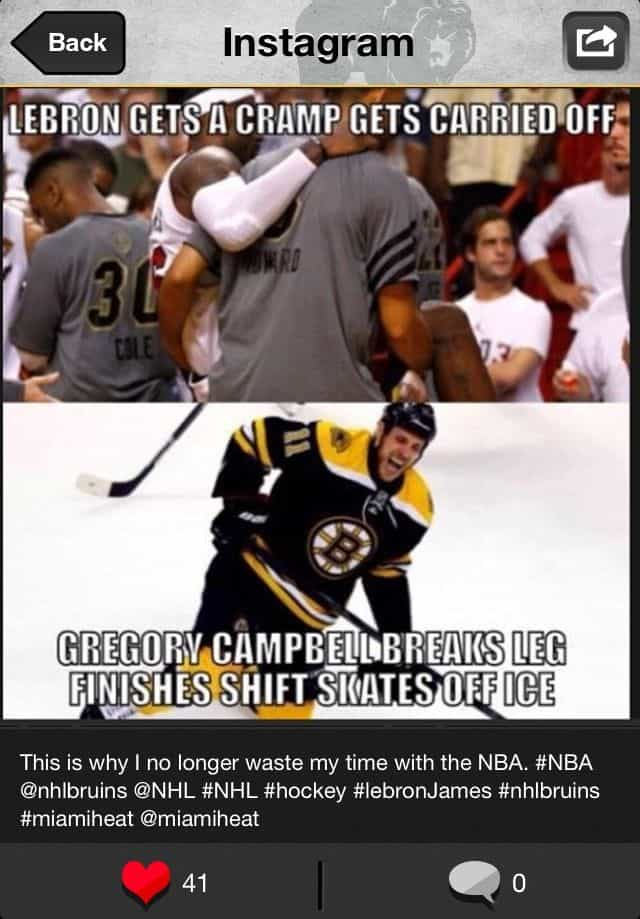 lebron james hockey funny